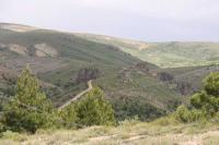 bozok-yaylasi